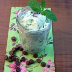 cravings-of-a-lunatic-mint-chocolate-chip-ice-cream-1
