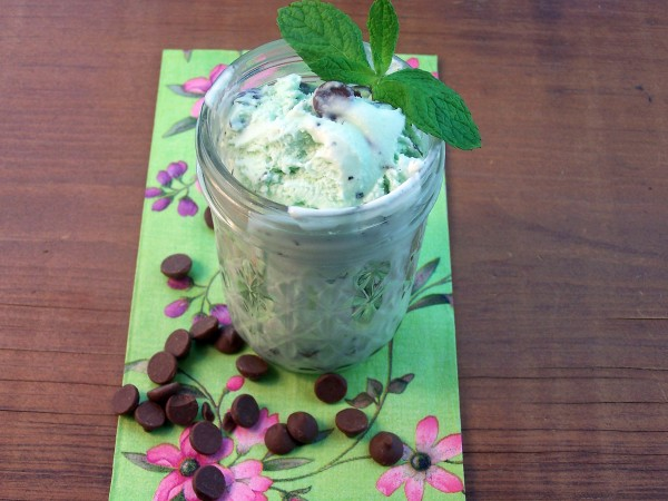 Mint Chocolate Chip Ice Cream by Cravings of a Lunatic
