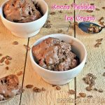 Cocoa Pebbles Ice Cream