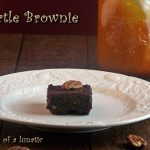 Ultimate Turtle Brownies: Burning Down The Kitchen with That Skinny Chick Can Bake