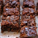 "Samoas aka Coconut Caramel Cookie Bars | Burning Down The Kitchen with ""From Cupcakes to Caviar"""