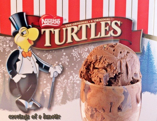 Copycat Turtle Ice Cream by Cravings of a Lunatic