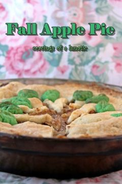 Fall Apple Pie is a classic recipe for the cool weather season. This recipe is easy to make and perfectly sweet.