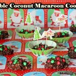 Double Coconut Macaroon Cookies: Guest Post for Chelsea's Culinary Indulgence