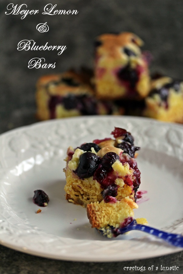 Meyer Lemon and Blueberry Bars on a white plate