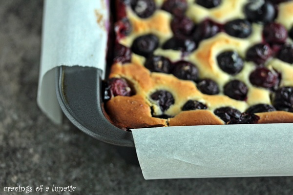 Meyer Lemon and Blueberry Bars in a pan