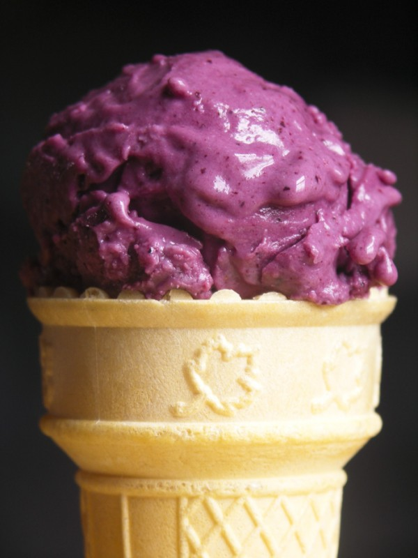 Blueberry Frozen Yogurt by Foodie with Family