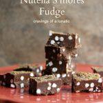 Microwave Nutella S'mores Fudge