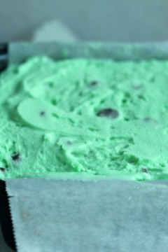 Mint Chocolate Chip Ice Cream Cake 3