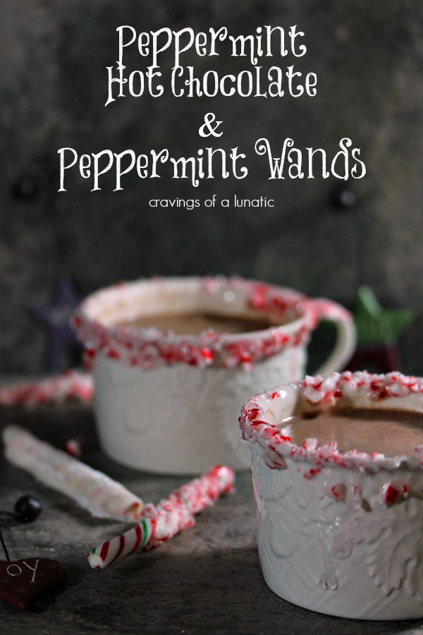 Peppermint Hot Chocolate and Peppermint Wands from cravingsofalunatic.com- This Hot Chocolate is spectacular and easy to make. Perfect for the holidays, and beyond. (@CravingsLunatic)