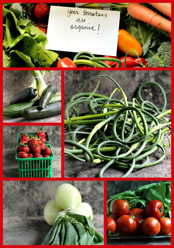 CSA First Week of Delivery