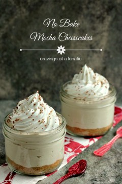 No Bake Mocha Cheesecake with Animal Cracker Crust