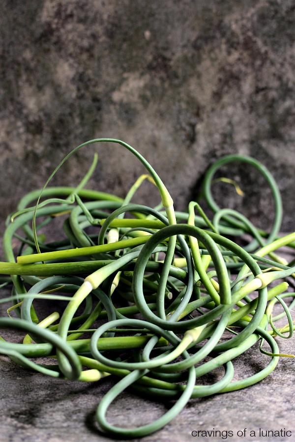 Garlic Scapes from my First Week of my New CSA