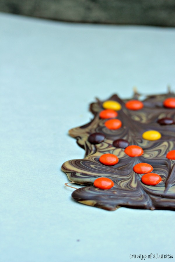 Peanut Butter and Chocolate Bark with Reese's Pieces | There is something about peanut butter combined with chocolate that makes perfect sense. Toss some Reese's Pieces into the mix and it's sheer perfection!