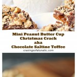 Mini Peanut Butter Cup Christmas Crack aka Chocolate Saltine Toffee baked and cut into pieces for the holidays or whenever you want a delicious snack!