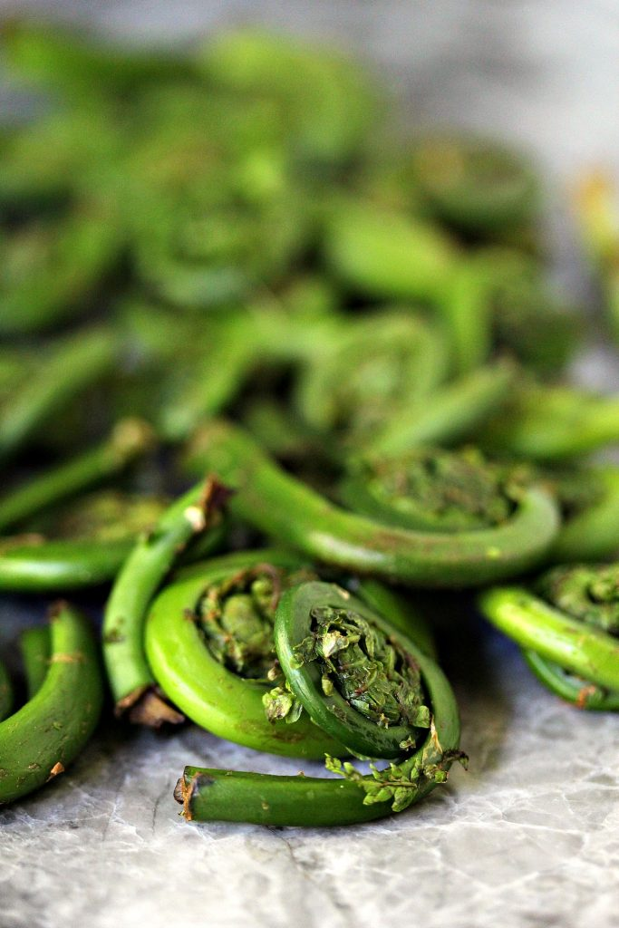 image of Fiddleheads