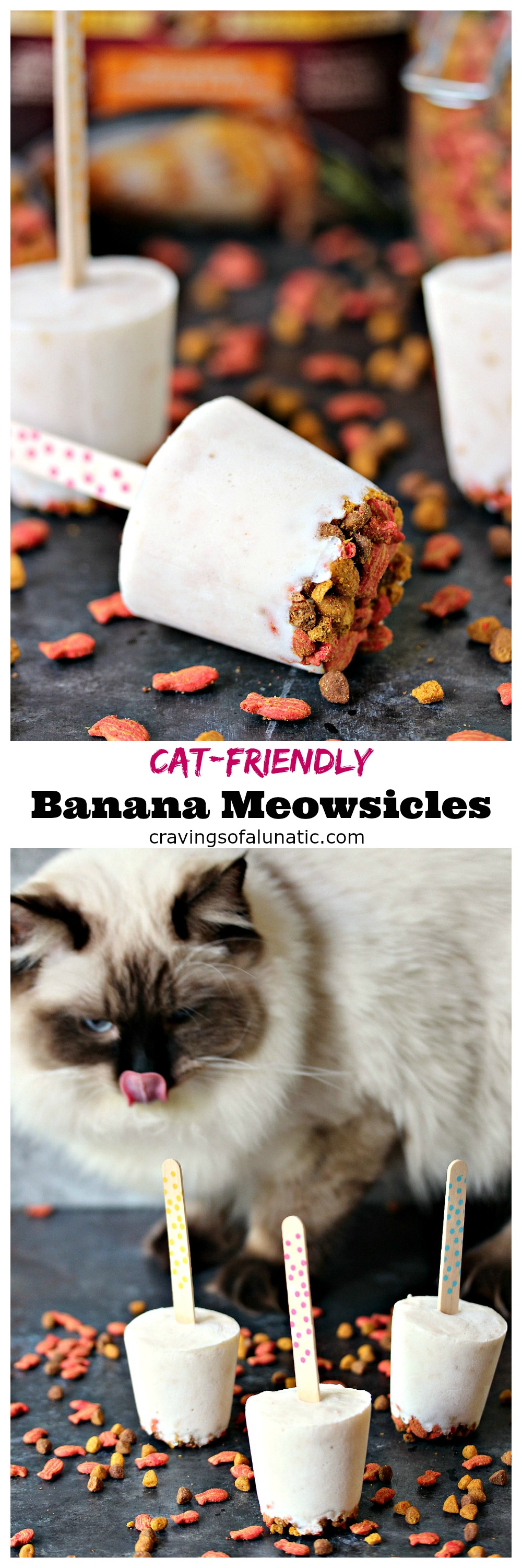 Cat-Friendly Banana Meowsicles. These refreshingpopsiclesareperfect for summer, and will let your cat cool off in style. Whip up a batch of these super easy 3 ingredient Cat-Friendly Banana Meowsicles today!