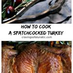 Spatchcock turkey collage image featuring two images of the cooked turkey