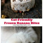Collage image featuring two images with text in between that states recipe and blog name. Top image is Cat friendly frozen banana bites shaped like hearts on a wood board with tiny cat treats scattered about. Bottom image is