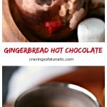 Gingerbread hot chocolate is the best around! This recipe has three secret ingredients that make it so. Curl up by the fire and sip this all day long.